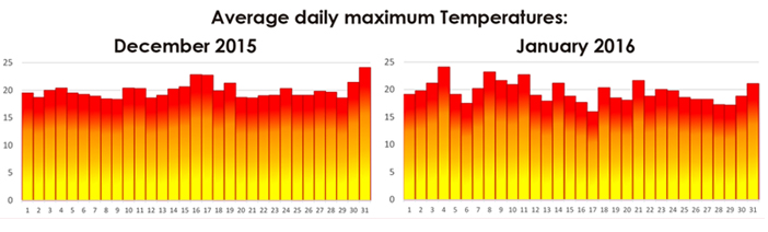 Daily Winter Temperature Averages